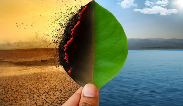 """""""Effects of climate change in SA are evident"""" says Ramaphosa"""